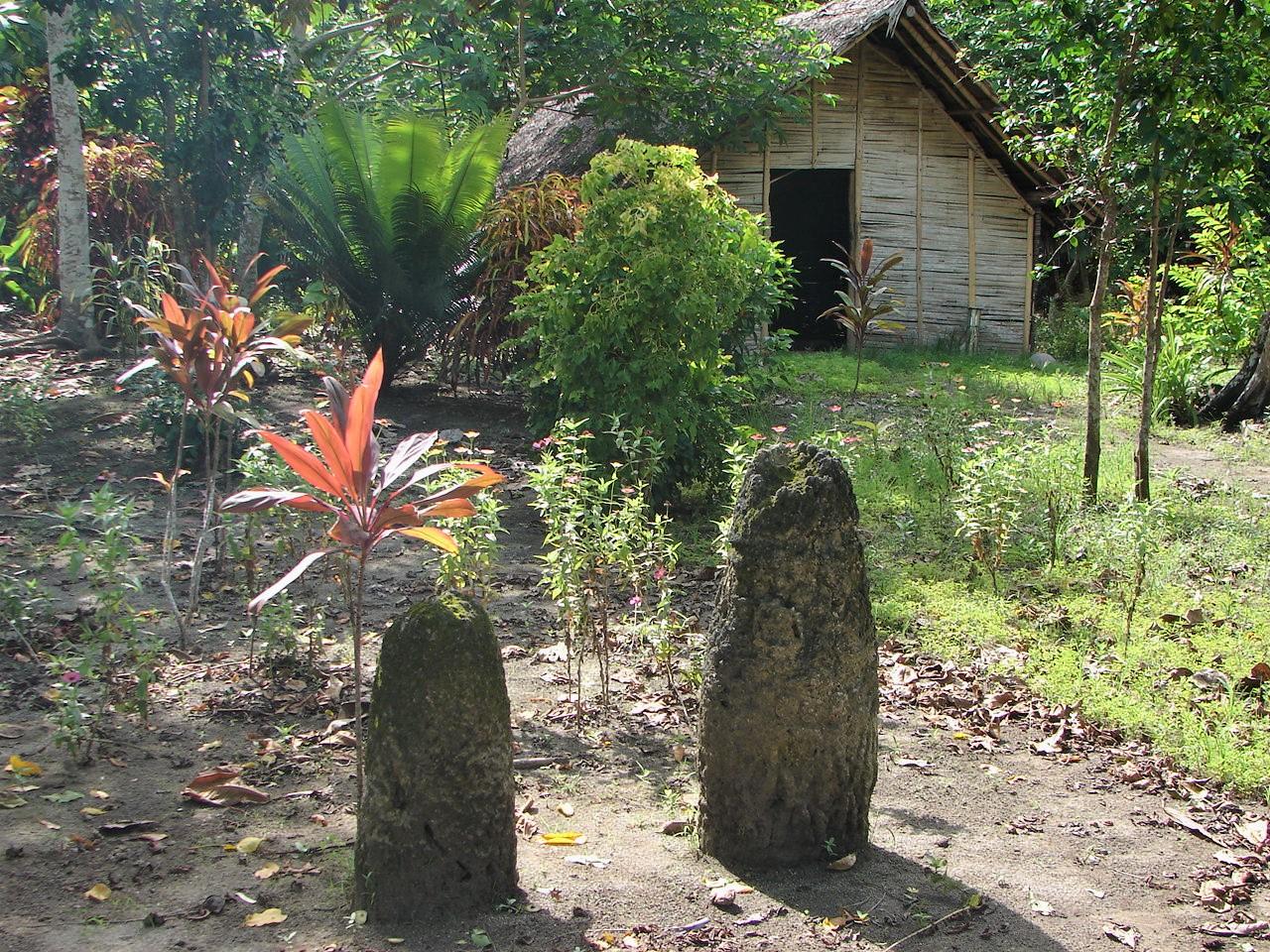 La maison sacrée des initiés (gemoy) est cernée de monolithes sacrés (tuye) dont le pouvoir surnaturel est encore craint de nos jours, janvier 2006. Photo Alexandre François