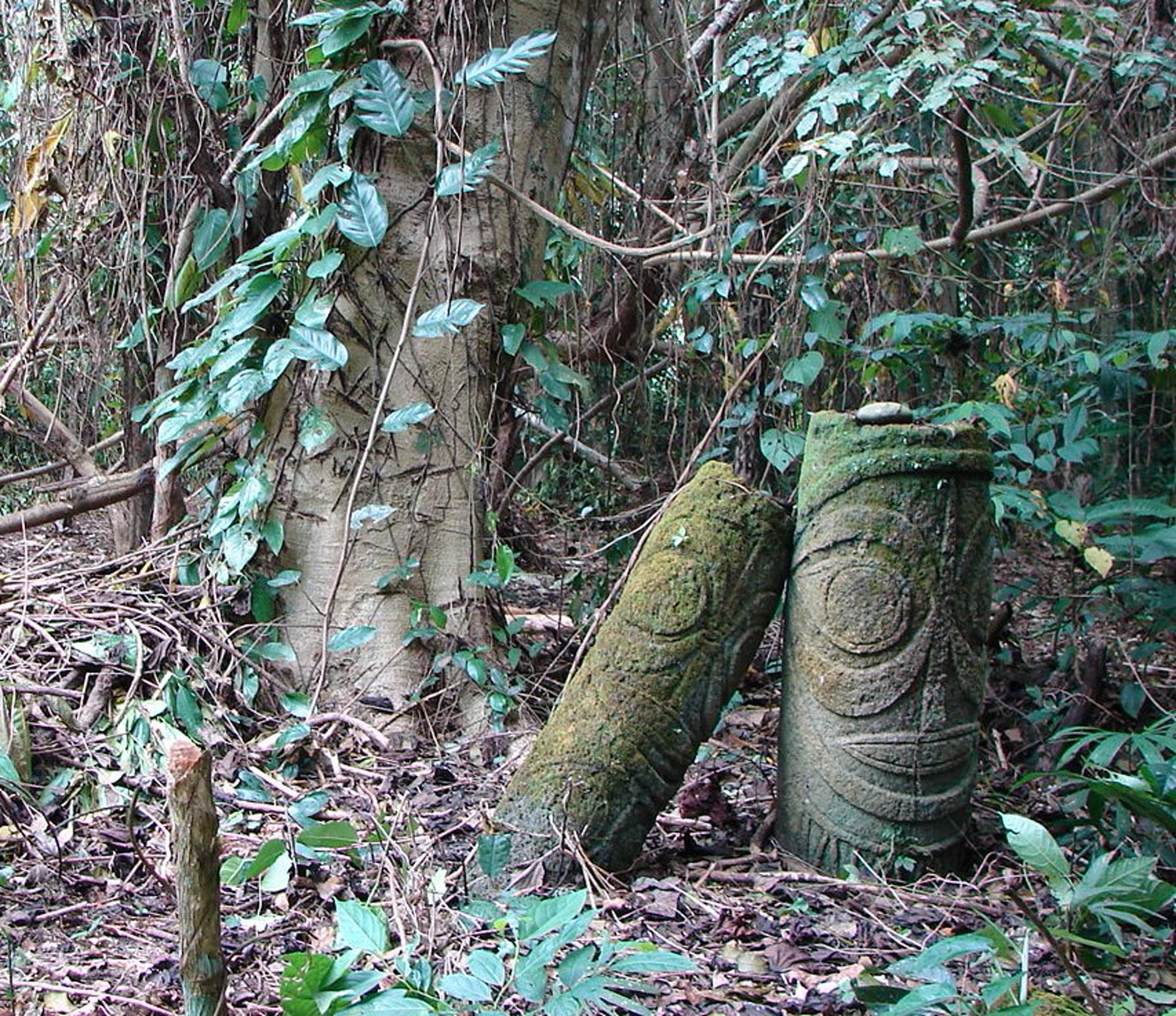 Au cœur de la forêt de Toga se trouvent des statues sacrées (ne dule), manifestation d'une présence divine qui est encore crainte et respectée. (photo AF, 2007)