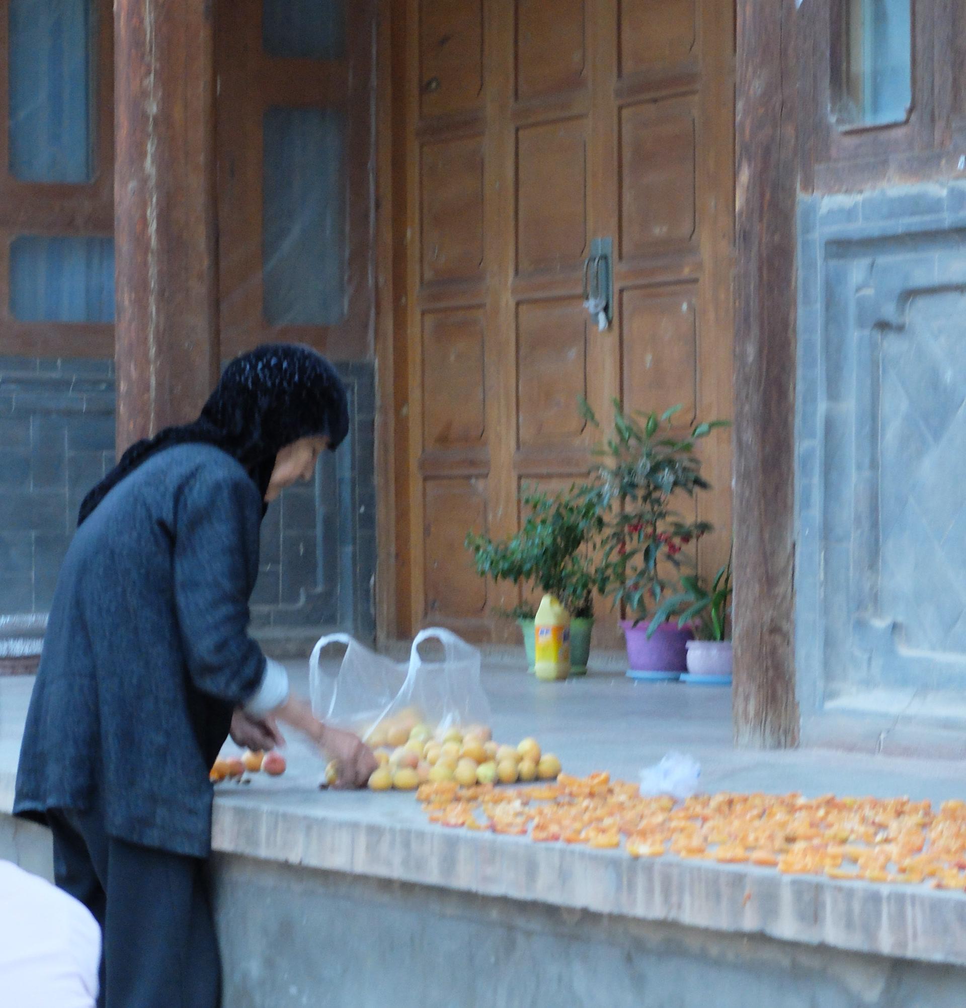 Séchage des abricots