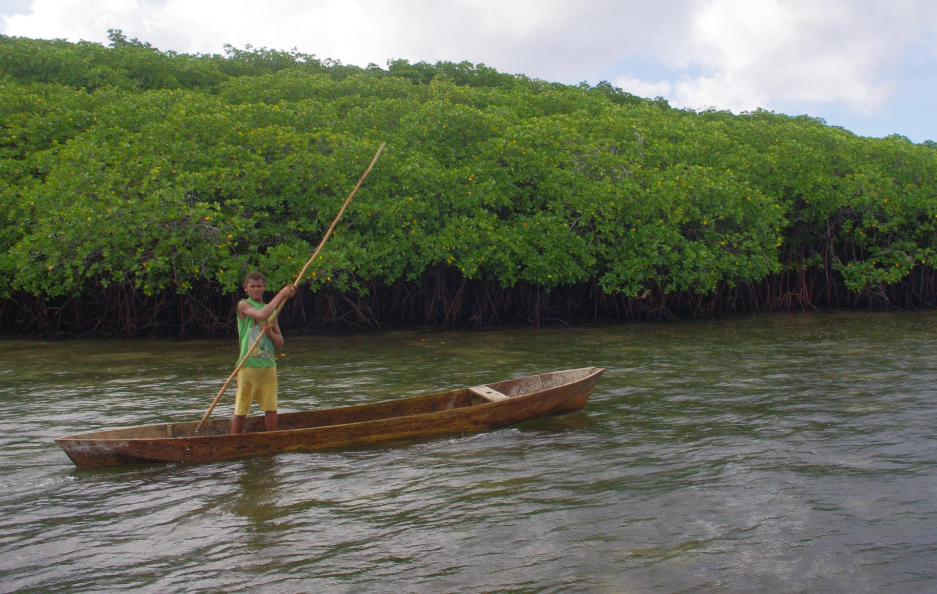 Un jeune homme pousse sa pirogue le long de la côte sud de Banie. Ce territoire historique de la langue tanema est désormais aujourd'hui habité par une communauté polynésienne venue de Tikopia. (photo AF, 2012)